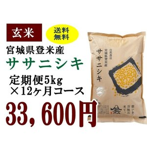 定期便12ヶ月コース:ササニシキ玄米5kg 宮城県登米産|tomerice