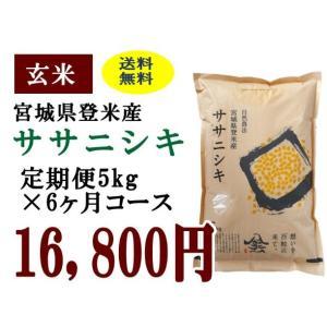 定期便6ヶ月コース:ササニシキ玄米5kg 宮城県登米産|tomerice