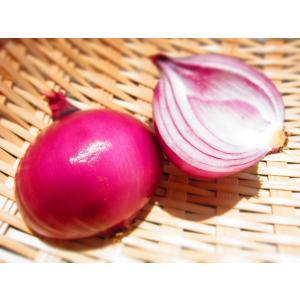 赤玉ねぎ (1kg:3〜4個) 農薬・化学肥料不使用|tomerice