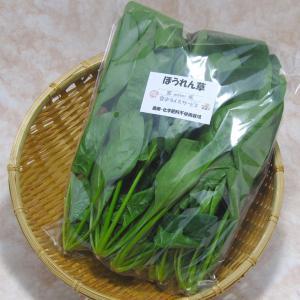 ほうれん草 (1束:150g) 農薬・化学肥料不使用|tomerice