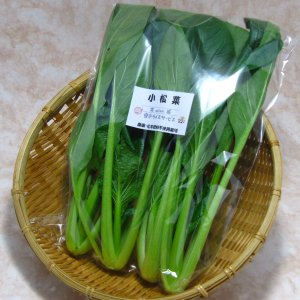 小松菜 (1束:150g) 農薬・化学肥料不使用|tomerice