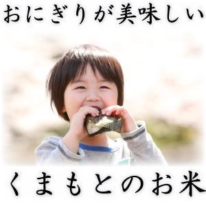 当店人気1番 精白米 新米 30年産 九州 熊本県産 ヒノヒカリ 10kg ひのひかり 白米 くまもとのお米 tomitasyoten 06