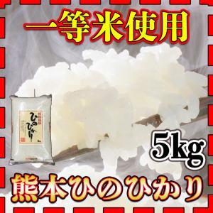 精白米一等米使用新米29年産九州熊本県産ヒノヒカリ5kgひの...