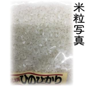 精白米 一等米使用 新米 30年産 九州 熊本県産 ヒノヒカリ 5kg ひのひかり 白米 くまもとのお米|tomitasyoten|03