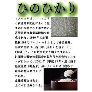 精白米 一等米使用 新米 30年産 九州 熊本県産 ヒノヒカリ 5kg ひのひかり 白米 くまもとのお米|tomitasyoten|06