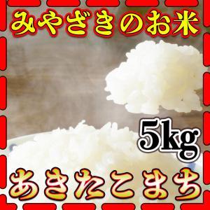 新米29年産九州宮崎県産あきたこまち5kg/白米/条件付き送...