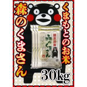 精白米29年産九州熊本県産森のくまさん30kg5kg6個白米...