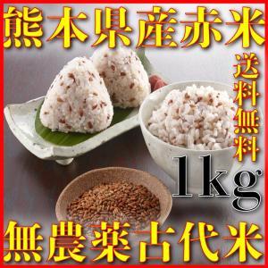 古代米として有名な九州熊本赤米無農薬 その中でも九州熊本県産の赤米を販売しております  注意 大量売...