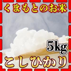 精白米29年産九州熊本県産コシヒカリ5kg白米こしひかりくま...