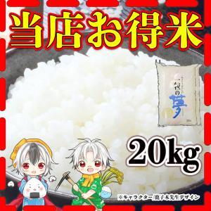 精白米 令和元年版 当店お得米 一粒の夢 20kg 規格外のお米 返品交換不可 10kg×2個 ノー...