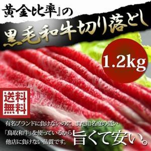 牛肉 すき焼き 切り落とし 1.2kg 端っこ お試し すき焼き肉 進物 ギフト 送料無料