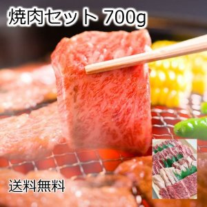 【ギフト】焼肉セット 700g お試し 送料無料  焼き肉用...