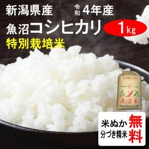 平成28年産 新潟県魚沼産 コシヒカリ(1等玄米) 1kg|tomoda