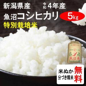 平成28年産 新潟県魚沼産 コシヒカリ(1等玄米) 5kg|tomoda