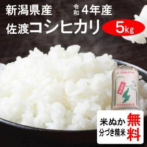 平成28年産 新潟県佐渡産 コシヒカリ(1等玄米) 5kg|tomoda