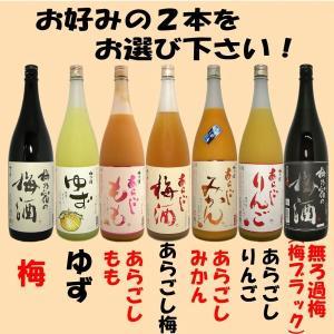 梅乃宿 果実酒 1800ml選べる2本セット|tomoda