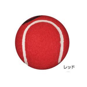 ウォーカーボール(2個組)|tonerlp