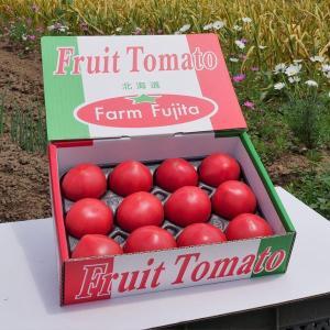 高糖度フルーツトマト800g(9個〜15個入り) 北海道余市産/野菜 お取り寄せ お中元 夏ギフト/ファームフジタ|tonxton-market