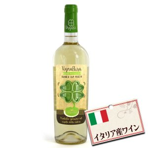 イタリア産 白ワイン ヴィーニャプーラ ビアンコ オーガニック 750ml tonya