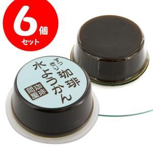 珈琲問屋 オリジナル コーヒー水ようかん (6個) 【セット割引】|tonya