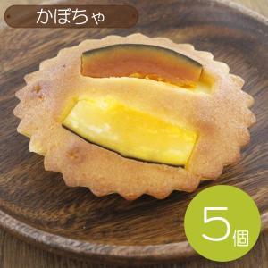 【ギフト箱入】 珈琲問屋 かぼちゃ マドレーヌ・ラウンド (5個) 【セット割引】|tonya