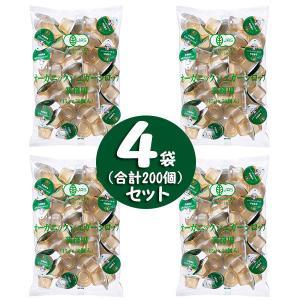 業務用 有機栽培オーガニックシロップ (15g×50個入)×4袋|tonya