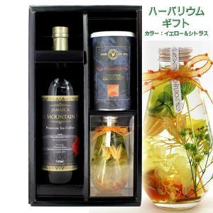 ハーバリウム イエロー & ブルーマウンテンNO.1缶 & プレミアム瓶詰アイスコーヒー ギフト DRIC-92BB-YC tonya
