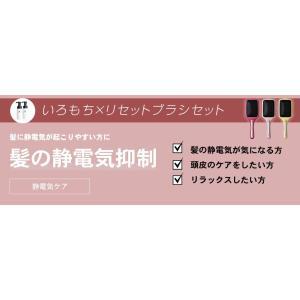 iro-mochi いろもち カラーリペア&コイズミ ビジョーナ リセットブラシ セット カラー復元&静電気抑制 (選べるカラー) 送料無料 top-salon-cosme 06