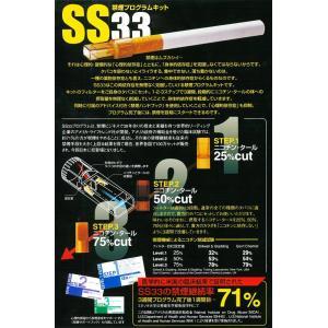 ◆ついで買いセール◆ 禁煙プログラムキット「SS33」ステップ3フィルター追加パック 28本入セット ニコチン・タール75%カット ■■ ◇ 禁煙 αPLUS|top1-price|04