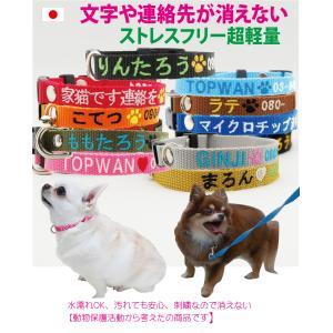 日本製 迷子札 超軽量 Sサイズ 刺繍迷子札首輪 犬 いぬ ペット 首輪 犬用迷子札 名前入れ 名入れ ネーム入り ネームタグ ドッグタグ 名札 おしゃれ かわいい topwan