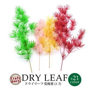 ドライリーフ 乾燥葉 全7種 3本入