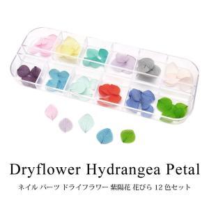 ドライフラワー 紫陽花 花びら 12色セット