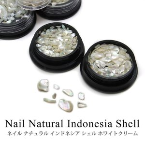 ネイル ナチュラル インドネシア シェル ホワイトクリーム 全3種 tora-shop