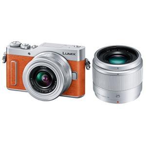 Panasonic ミラーレス一眼カメラ ルミックス GF9...