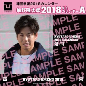 2018_卓上カレンダー(私服版):梅野隆太郎選手|toracamerashop