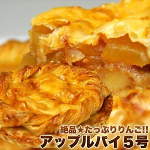 タイムセール 訳あり わけあり ケーキ パイ アップルパイ りんごたっぷり 5号