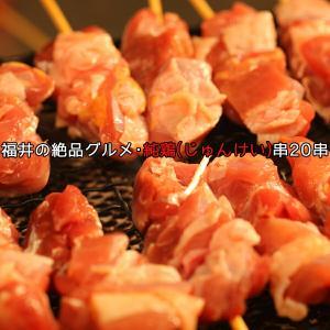 クーポン 焼き肉 bbq バーベキュー お肉 肉 やきとり ヤキトリ 『福井地元の絶品』 純鶏串 20串 焼鳥 冷凍A toretate1ban