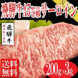お中元 2021ステーキ 飛騨牛 牛肉 お肉 肉 送料無料 A5等級 サーロインステーキ 200g×3枚|toretate1ban