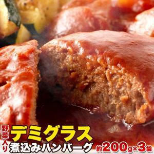ポイント消化 ハンバーグ お肉 肉 送料無料 じっくり煮込んだデミグラス煮込み 約 200g×3袋