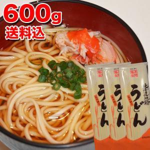ポイント消化 送料無料 メール便 北海道地粉 うどん ウドン 600g