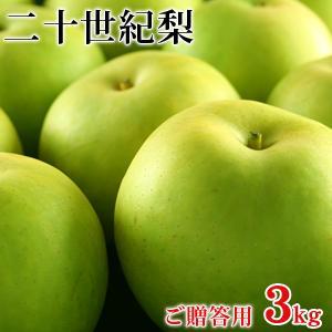 二十世紀梨(20世紀梨)3kg詰(8玉前後入/2L〜3Lサイズ) 鳥取県産 赤秀(ご贈答用) 送料無料|toretatehonpo