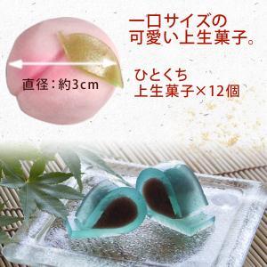 冬季限定 四季の十二撰 ひとくち上生菓子詰合せ...の詳細画像4