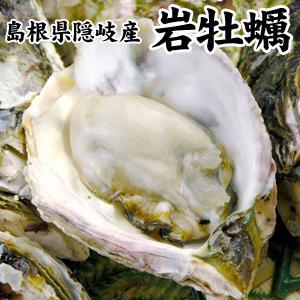 島根県隠岐産 岩牡蠣1kgセット(5個前後入)|toretatehonpo