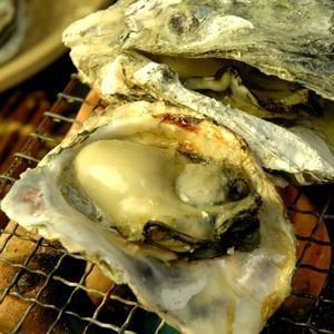 島根県隠岐産 岩牡蠣1kgセット(5個前後入)|toretatehonpo|04