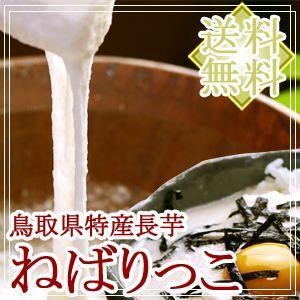 鳥取県北栄町産 砂丘長いも「ねばりっこ」約2kg(2〜3本入) 送料無料