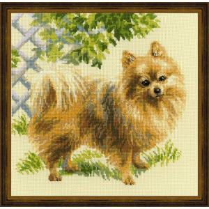 RIOLISクロスステッチ刺繍キット No.1585 「Pomeranian」 (ポメラニアン 犬)|torii