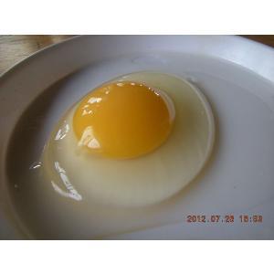 平飼いもみじ卵 自然卵 30個入りの詳細画像1