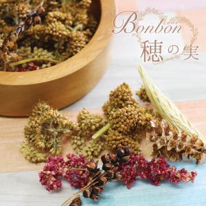 CAP! 鳥さんへのバレンタインギフト BonBon穂の実|torimura