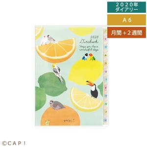 【MIDORI】2020年版 ポケットダイアリー<A6> トリ柄|torimura