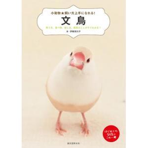 小動物☆飼い方上手になれる! 文鳥|torimura